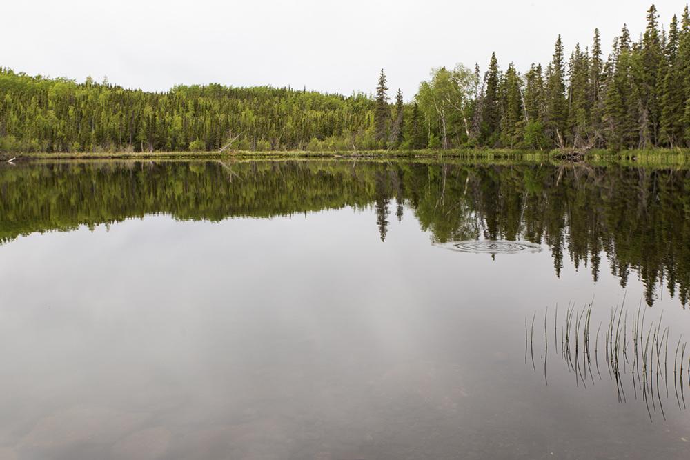 Lower Lake Ohmer