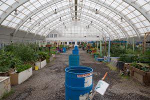 Inuvik's greenhouse