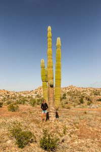 Just in case the cactus didn't look tall enough beside Ben, here's a picture with Emma