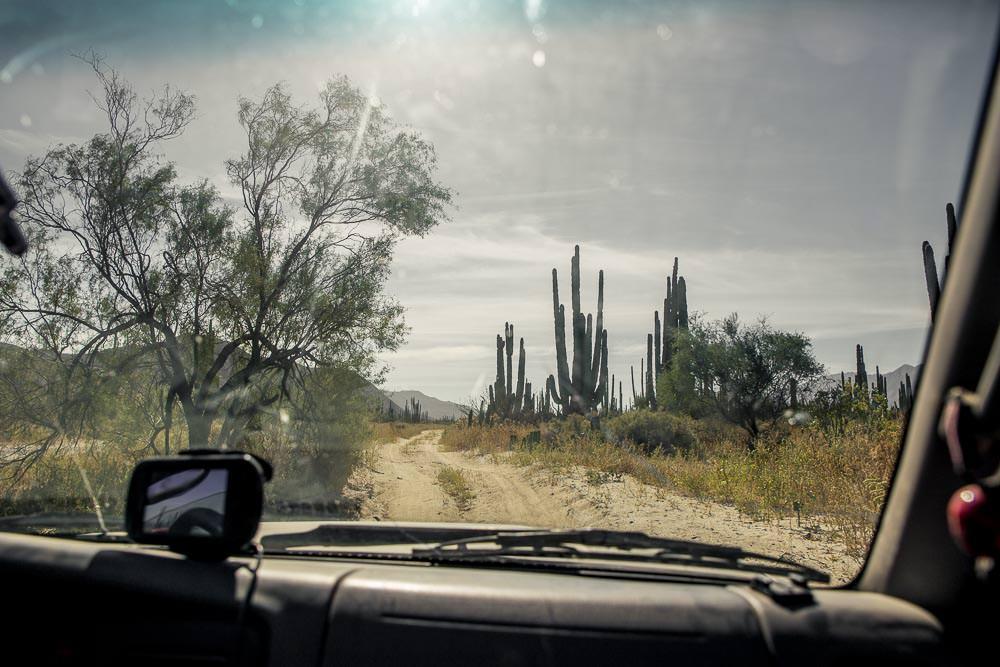More dusty back roads