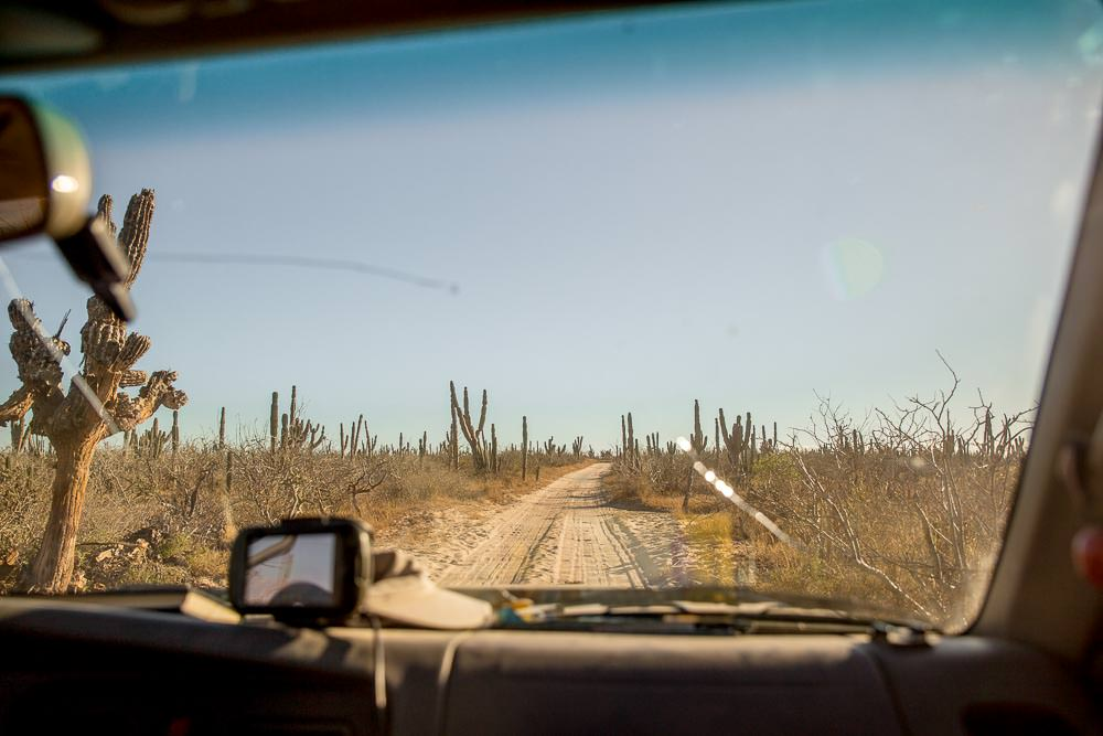 Another dusty Baja back road