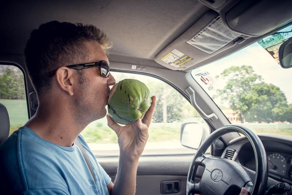 Refreshing coconut.